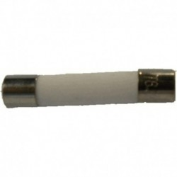 Fusível microondas padrão 5.0 x 20 ampères de diâmetro 8 mm