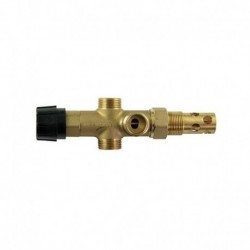 """Biomassa de caldeira da válvula termostática de segurança padrão DBV1 3/4 """"m"""""""