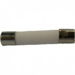 Fusível microondas padrão 5.0 x 20 mm diâmetro 12,5 ampères